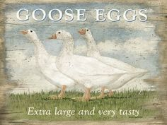 "Goose Eggs Metal Sign by OMSC. $19.50. Glossy, full-color, enamalized imaged baked onto thick, 24-gauge steel. Rounded corners with holes for easy hanging. Ships in Ploy-bag for complete protection. Eco-friendly process, hand-made in the USA. This sign measures 16"" by 12"". This sign measures 16"" x 12"". Featuring art by Martin Wiscombe. Born and raised in Lyme Regis, Dorset, Martin studied illustration and design in the west country, then went on to spend more than 15 yea..."