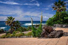 Puerto de la Cruz Teneriffa - Playa Jardin – ein Garten Eden am Meer