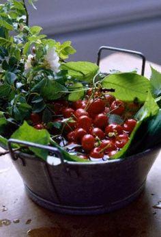 Fotografie článku: Jak zmrazit ovoce 2.díl