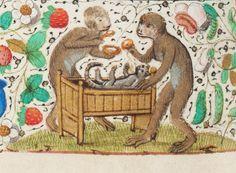 folia medieval - Szukaj w Google