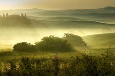 Belvedere am Morgen San Quirico Val D'Orcia by Wolfgang.Grilz