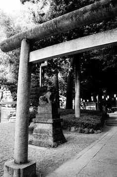August 31, 2012  氷川神社  Hikawa Shrine