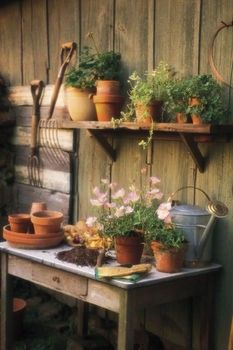 50 Most Popular Small Garden Design Ideas - Find landscaping and garden ideas, including water features, fences, gates, flowers and plants.