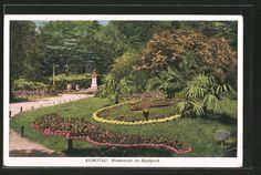 old postcard: AK Komotau / Chomutov, Blumenuhr im Stadtpark