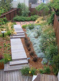 pathway-grasses