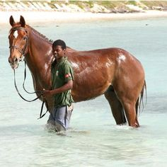 Chicks LOVE #Mauritius and #horseriding! #horse #sand #achickinMauritius #chicksandtripsontheroad #island #sea