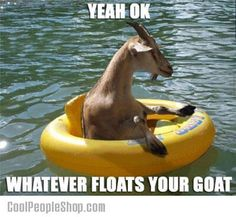 Floating Goat | Cool People Shop