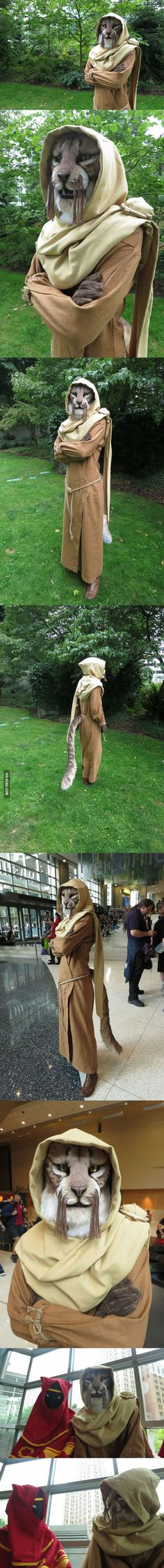 Skyrim Khajiit cosplay - M'aiq the Liar