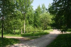 Helsingin keskuspuisto – Viherkehä