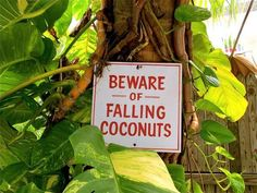 It's a serious danger...  #Travel #Humor #Signs
