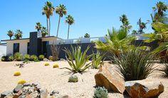 Desert Springs Landscaping Las Vegas Pictures Of Desert Landscaping Palm Springs Desert Landscape Pictures Of Desert Backyard Landscaping Garden Of Life Vitamins Desert Backyard, Modern Backyard, Modern Landscaping, Landscaping Plants, Front Yard Landscaping, Landscaping Ideas, Tropical Landscaping, Backyard Ideas, Palm Springs Real Estate