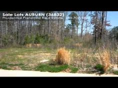 Nice wooded lots approximately 1 acre or more.  See individual listings for lot sizes.