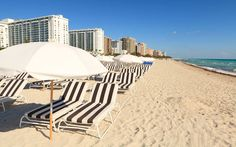 South Beach Group   Miami, Fl   Boutique hotels in the heart of Miami Beach
