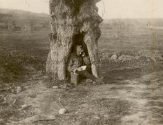 Post telefonic într-o scorbură de copac. Wwi, First World, Troops, Romania, World War, Burgers, Awesome, Bacon, Sandwiches