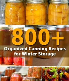 You might say this is the Mother Lode of all canning recipe lists! 800 amazing recipes, all tried and trued and all beautifully organized for easy reference. Jams, jellies, fruits and vegetables are all categorized so you can find them easily and get started canning for winter storage. Check out the lists at diyncrafts.com here… …