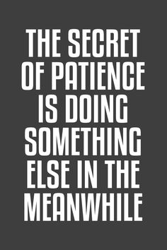 The secret of patience is doing something else in the meanwhile.