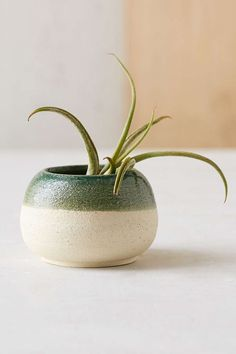 Haley Ann X UO Micro Sand Pot Planter - Urban Outfitters