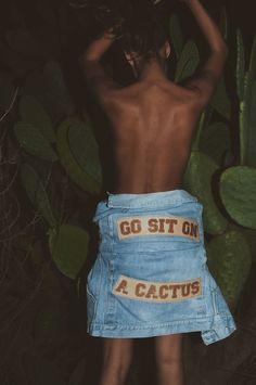 Go sit on a cactus!