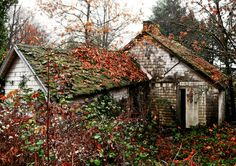 Abandoned, the vines and moss will return it to the earth. Abandoned Mansions, Abandoned Buildings, Abandoned Places, Beautiful Buildings, Beautiful Places, Amazing Places, Creepy Old Houses, Camping Photography, Mountain Photography