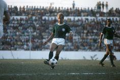 1° - Ademir da Guia - 901 jogos entre 1962 e 1977 e em 1984