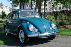 Classic vow bug  | Classic Vintage 1964 VW Volkswagen Beetle Bug Sedan Sea Blue | Classic ...