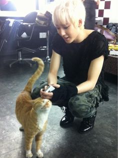 Kevin.  I don't know who's cuter? Kevin or the kitty. Lol!:)