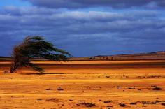 Sal, Cabo Verde by michalgomolinski, via Flickr