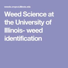 Weed Science at the University of Illinois- weed identification