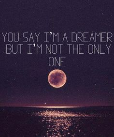 You say I'm a Dreamer...but I'm not the only one.   Vote Obama & his cronies out!