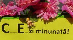 Un mesaj de suflet pentru Constantin si Elena Happy Birthday, Plants, Happy Brithday, Urari La Multi Ani, Happy Birthday Funny, Plant, Planets, Happy Birth