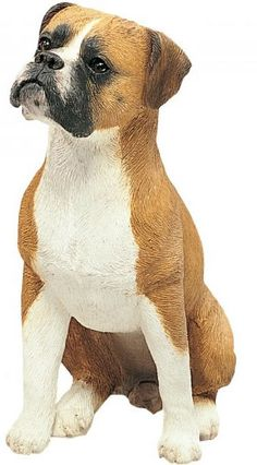 Sitting Boxer Dog Statue Sculpture, UC,  This Boxer dog statue looks so realistic, you might be tempted to give him a bone. For over 25 years, the canine lovers at Sandicast Studios in San Diego have been producing the most life like dog statues on the market. They are made from quality designer resin and hand finished with glass eyes and artist grade paints. You will enjoy the company of this Boxer dog statue in your home for years to come.
