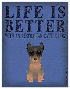 Life Is Better With An Australian Cattle Dog...  I AGREE!