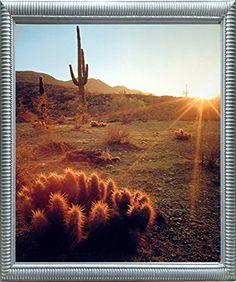 Southwest Cactus Field Sunset Desert Scenic Silver Framed... https://www.amazon.com/dp/B01MTXN3ZJ/ref=cm_sw_r_pi_dp_x_mk8kzbWE4PV0Z