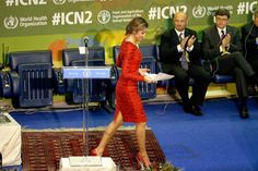 Queens & Princesses - Queen Letizia has extended her stay in Rome to attend the Second International Conference on Nutrition, which was held in the premises of the United Nations Food and Agriculture. On the occasion, the Queen notably met with Pope Francis.