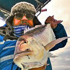 Oggi faceva un freddo da battere i dentici.... #stefanoadami #lowrancefishing #lowrance #SarGenova #dentex #trainacolvivo #mare #freddo #maredinverno #traina #sea