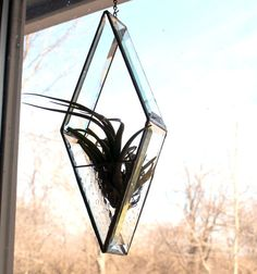 Diamond Beveled  Stained Glass Air Plant Holder  Home by LAGlass