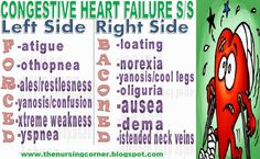 15 Cardiology Quick Facts and Mnemonics for Health Professionals. Quick way to learn and remember important cardiology facts. Perfect for all health sciences. Medical Surgical Nursing, Cardiac Nursing, Nursing Mnemonics, Pediatric Nursing, Congestive Heart Failure Signs, Right Sided Heart Failure, Signs Of Heart Failure, Nursing Information, Just In Case