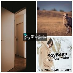 Subtle Soybean is a reliable & versatile neutral designated by Pantone as one of the Spring/Summer 2019 Color Trends. #pantone #colortrends