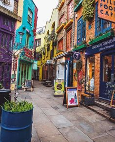 Colourful Neal's yard