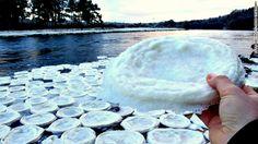 circulo-hielo  extraños cúmulos de hielo en forma de plato comenzaron a aparecer en el río. ¿Cómo sucedió?