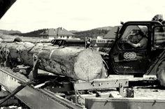 Bale okrągłe Monster Trucks, Vehicles, Car, Vehicle, Tools