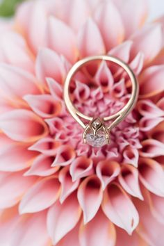 Dream floral engagement ring. Rose gold oval moissanite ring. Floral ring. South Africa. France Floral Engagement Ring, Engagement Rings, Moissanite Rings, South Africa, Heart Ring, Rose Gold, France, Jewellery, Enagement Rings