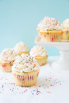 Funfetti Cupcakes - Ingredients:  Funfetti Cupcakes  3/4 cup all-purpose flour 3/4 cup cake flour 1 1/2 tsp baking powder 1/4 tsp salt 1/2 cup unsalted butter, softened 3/4 cup   2 Tbsp granulated sugar 1 large egg 2 large egg whites 1 tsp vanilla extract 1/4 tsp almond extract 1/4 cup   3 Tbsp milk (preferably whole) #cupcakes #cupcakeideas #cupcakerecipes #food #yummy #sweet #delicious #cupcake