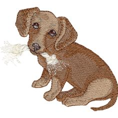Free Embroidery Design: Dachshund