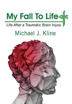 My Fall To Life: Life After a Traumatic #BrainInjury #neuroskills