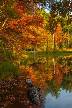 autumn in New Hampshire - colorful reflections  *Explored by debthepicturelady on Flickr.