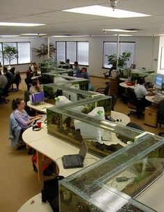 When you're working in an office with tiny workspaces and when you're surrounded by nothing but concrete walls and artificial lights, even the slightest element that doesn't fall into the same category would be like a breath of fresh air. This office features a very nice balance between natural and artificial elements. The giant fish tank separates the work spaces and provides the workers with something and relaxing to look at.