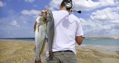 Baits that are effective in surf fishing reflect the natural food sources at the shore that fish are accustomed to eating. In some cases, you can scavenge for live bait on the beaches before you start fishing. Otherwise, check with local seaside bait shops for good bait products.