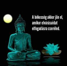 Buddha, békesség, megfontolandó.