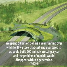 Wildlife bridges actually reduce costs. Preventative maintenance for wildlife! Save Our Earth, Save The Planet, Faith In Humanity Restored, Wtf Fun Facts, Random Facts, Worlds Of Fun, Gaia, Change The World, Mother Earth